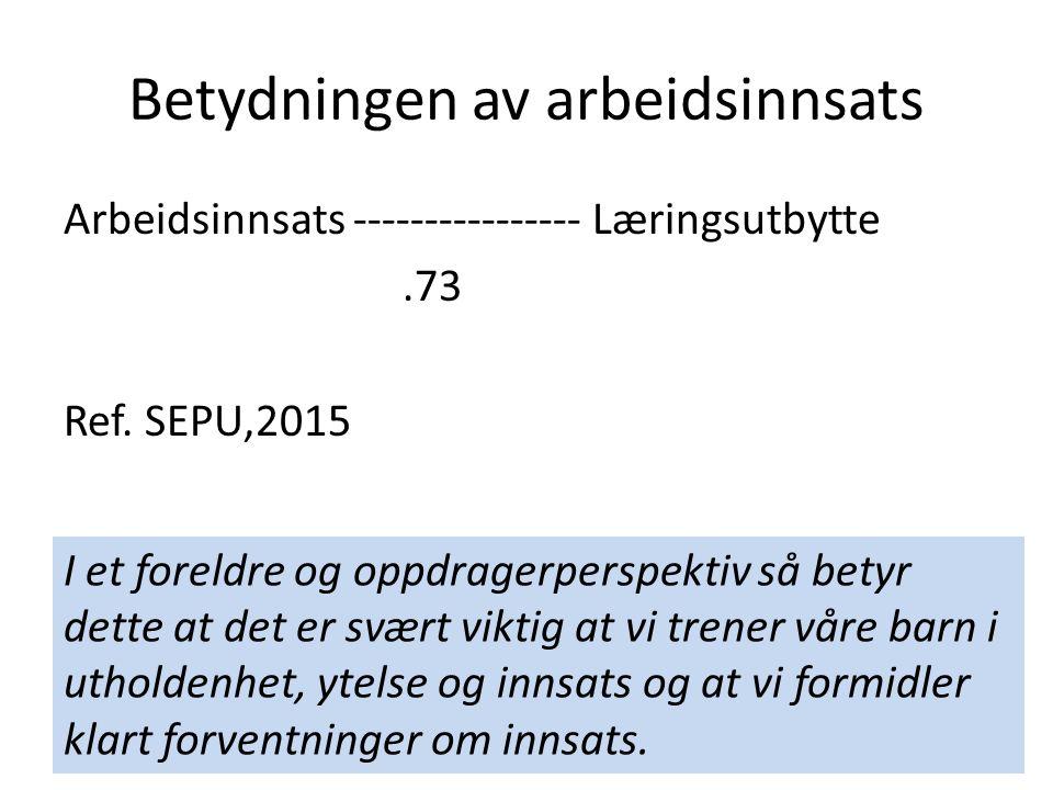 Betydningen av arbeidsinnsats Arbeidsinnsats ---------------- Læringsutbytte.73 Ref. SEPU,2015 I et foreldre og oppdragerperspektiv så betyr dette at