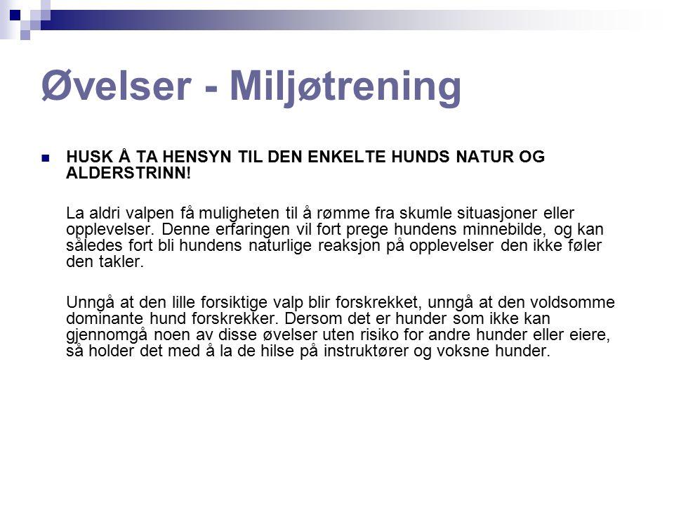 Øvelser - Miljøtrening HUSK Å TA HENSYN TIL DEN ENKELTE HUNDS NATUR OG ALDERSTRINN.