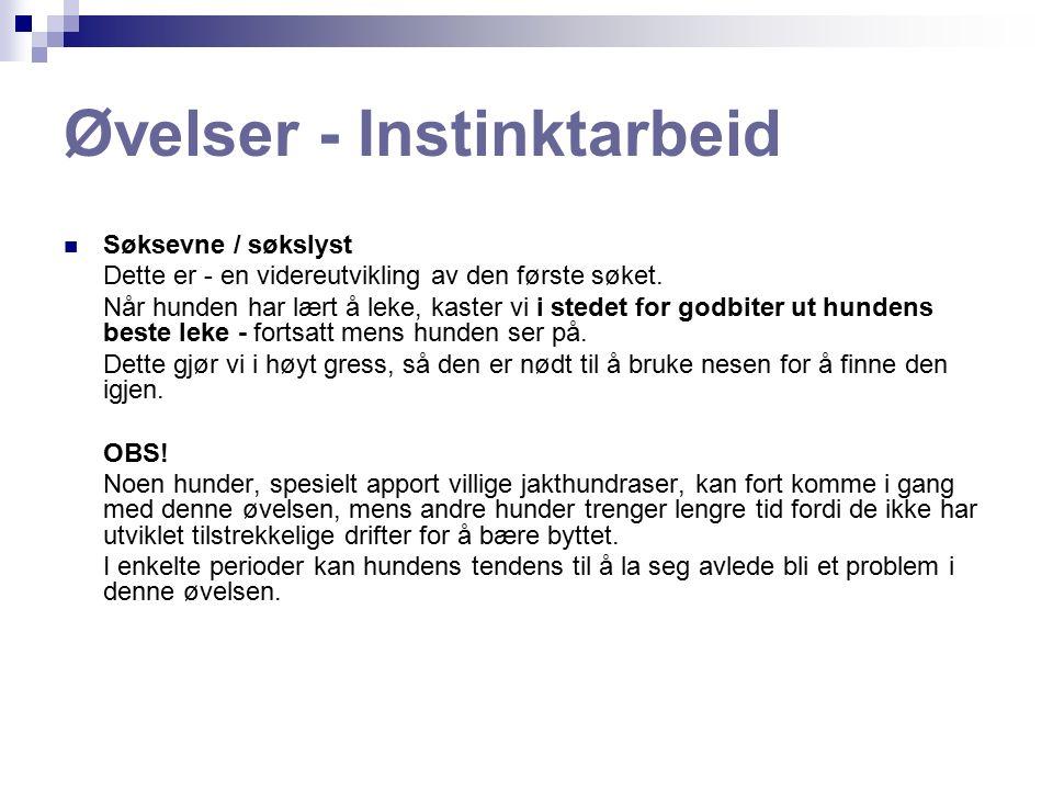 Øvelser - Instinktarbeid Søksevne / søkslyst Dette er - en videreutvikling av den første søket.