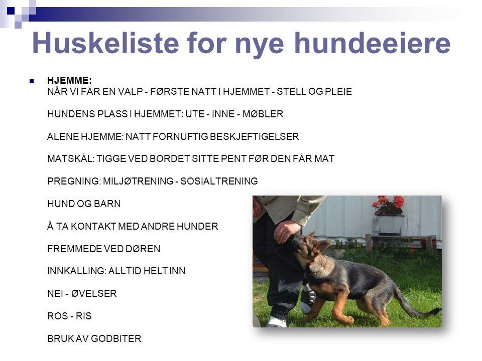Huskeliste for nye hundeeiere HJEMME: NÅR VI FÅR EN VALP - FØRSTE NATT I HJEMMET - STELL OG PLEIE HUNDENS PLASS I HJEMMET: UTE - INNE - MØBLER ALENE HJEMME: NATT FORNUFTIG BESKJEFTIGELSER MATSKÅL: TIGGE VED BORDET SITTE PENT FØR DEN FÅR MAT PREGNING: MILJØTRENING - SOSIALTRENING HUND OG BARN Å TA KONTAKT MED ANDRE HUNDER FREMMEDE VED DØREN INNKALLING: ALLTID HELT INN NEI - ØVELSER ROS - RIS BRUK AV GODBITER