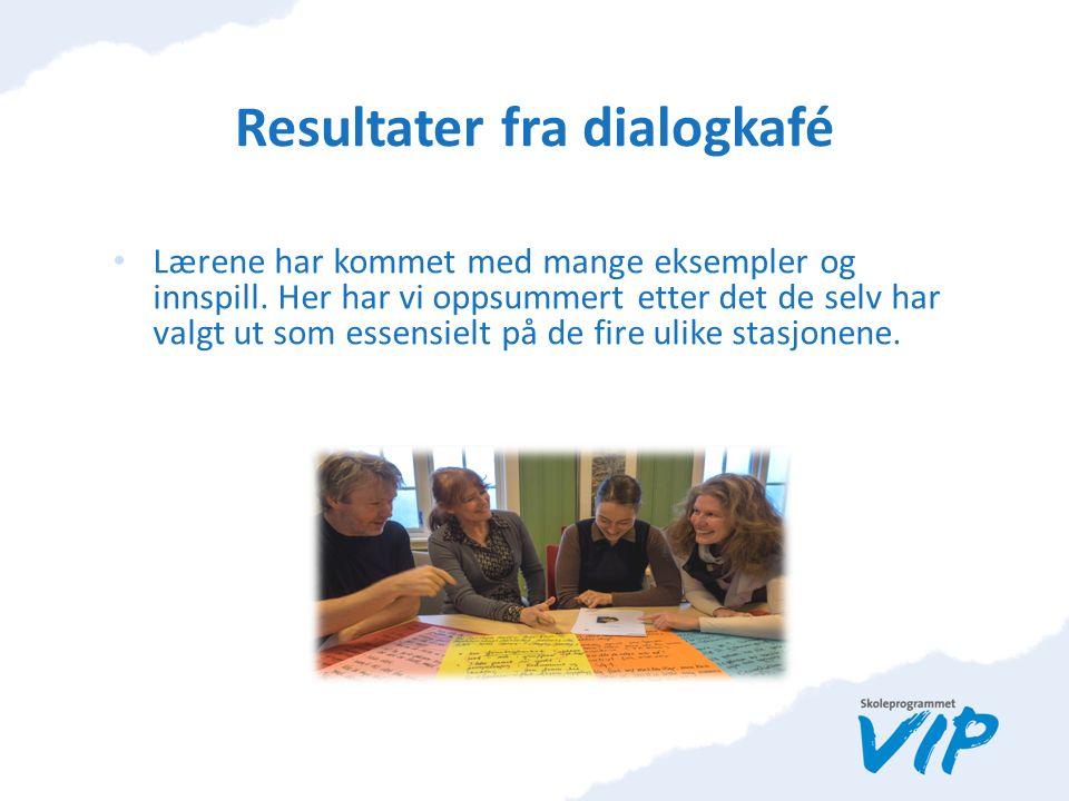 Resultater fra dialogkafé Lærene har kommet med mange eksempler og innspill.