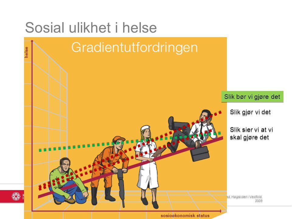 Sosial ulikhet i helse i praksis 3 3 I Norge har Gini-koeffisienten økt fra under 0,22 i 1990 til 0,26 i 2000.