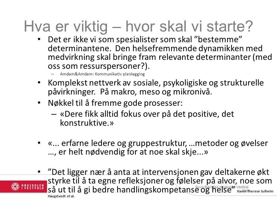 """Eyvin Bjørnstad, Høgskolen i Vestfold, 2010 Hva er viktig – hvor skal vi starte? Det er ikke vi som spesialister som skal """"bestemme"""" determinantene. D"""