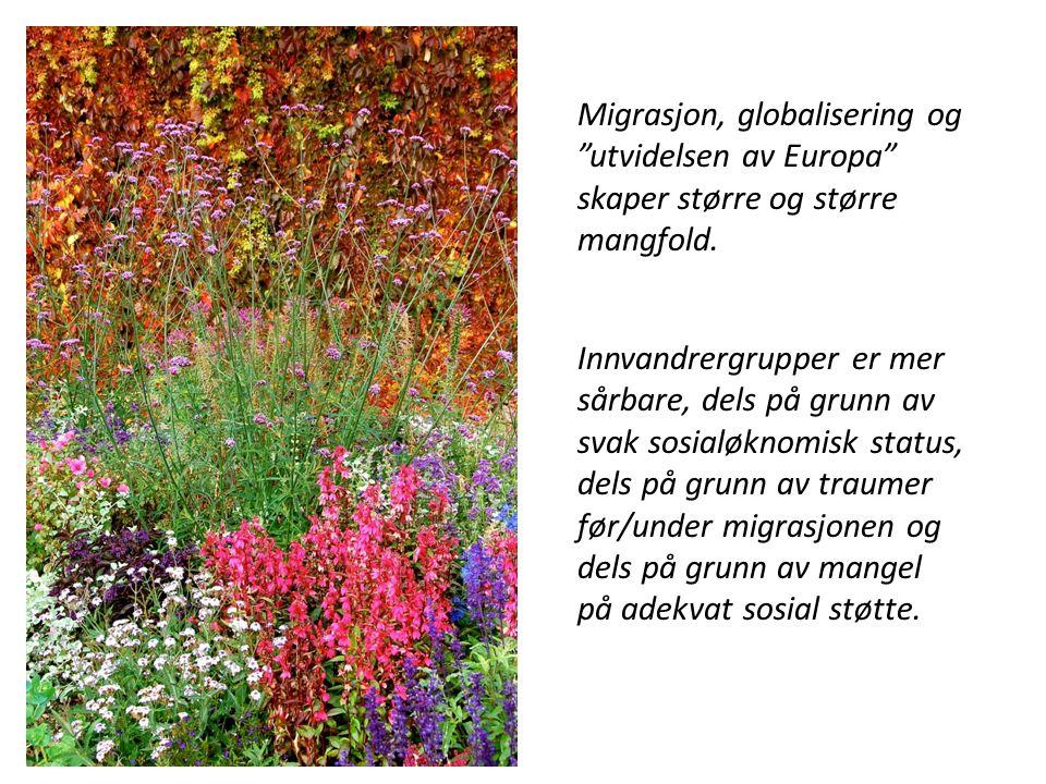 Migrasjon, globalisering og utvidelsen av Europa skaper større og større mangfold.