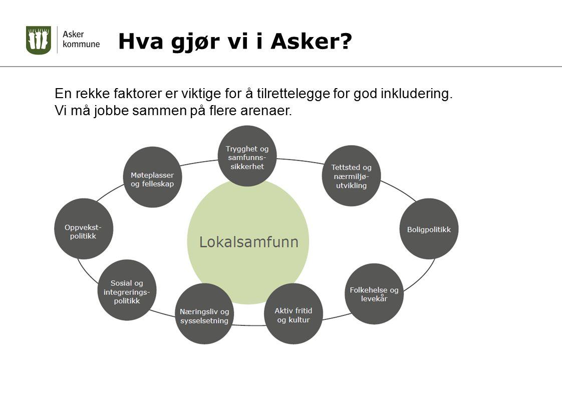 Hva gjør vi i Asker. En rekke faktorer er viktige for å tilrettelegge for god inkludering.