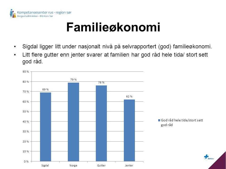 Familieøkonomi Sigdal ligger litt under nasjonalt nivå på selvrapportert (god) familieøkonomi.