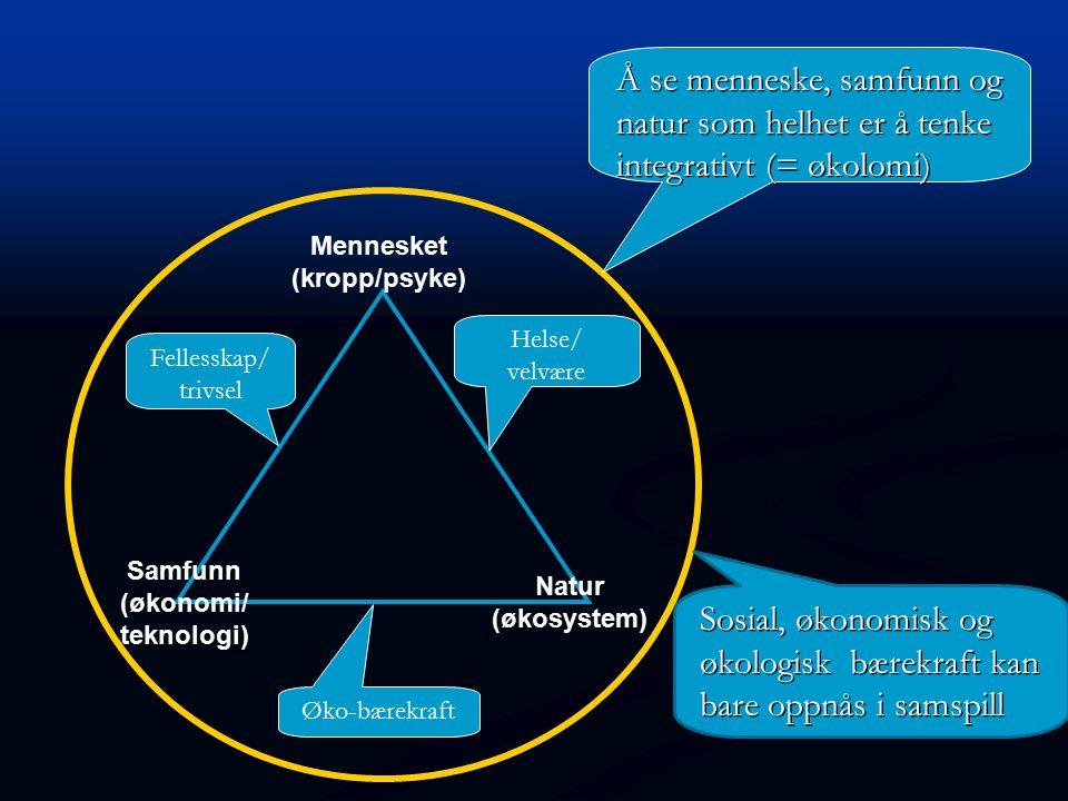 Mennesket (kropp/psyke) Natur (økosystem) Samfunn (økonomi/ teknologi) Fellesskap/ trivsel Øko-bærekraft Helse/ velvære Å se menneske, samfunn og natu