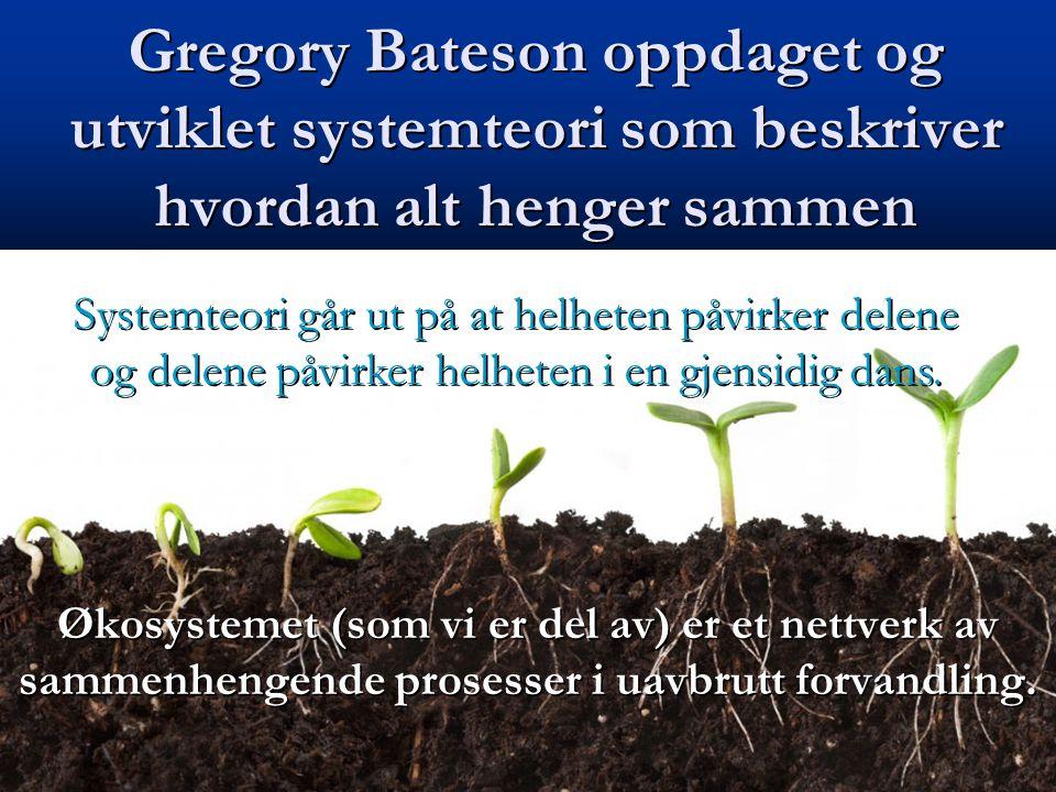 Gregory Bateson oppdaget og utviklet systemteori som beskriver hvordan alt henger sammen Økosystemet (som vi er del av) er et nettverk av sammenhengen