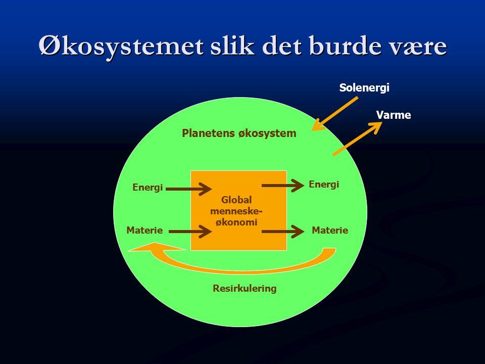 Planetens økosystem Global menneske- økonomi Energi Resirkulering Materie Solenergi Varme Økosystemet slik det burde være