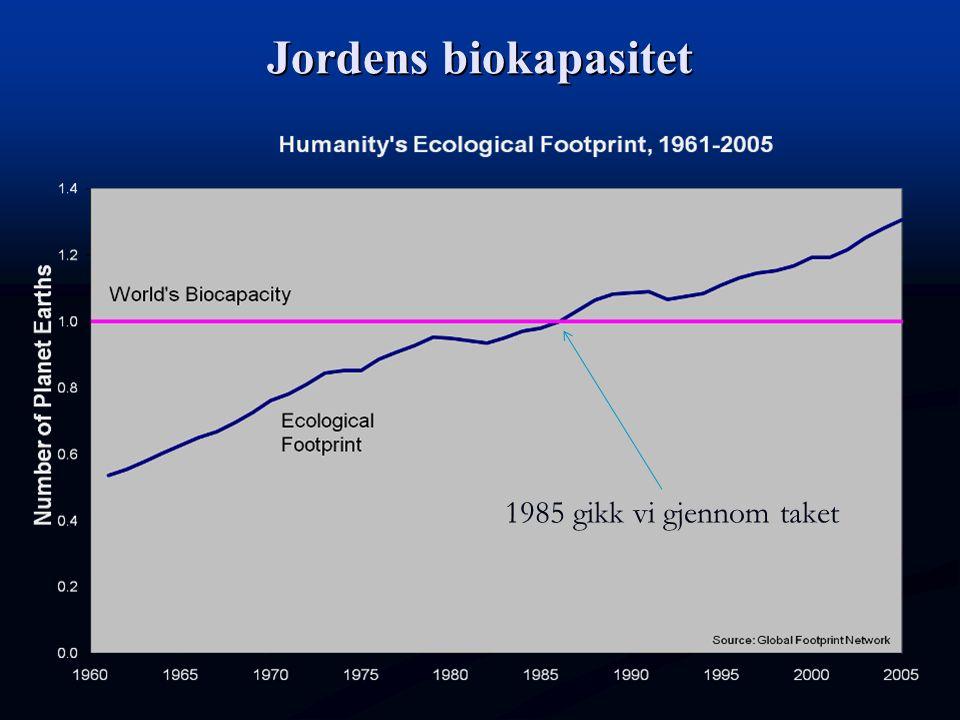 Jordens biokapasitet 1985 gikk vi gjennom taket