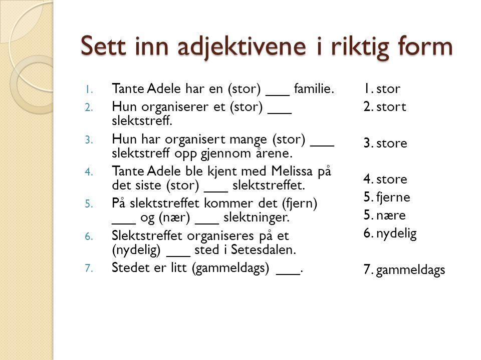 Sett inn adjektivene i riktig form 1. Tante Adele har en (stor) ___ familie.