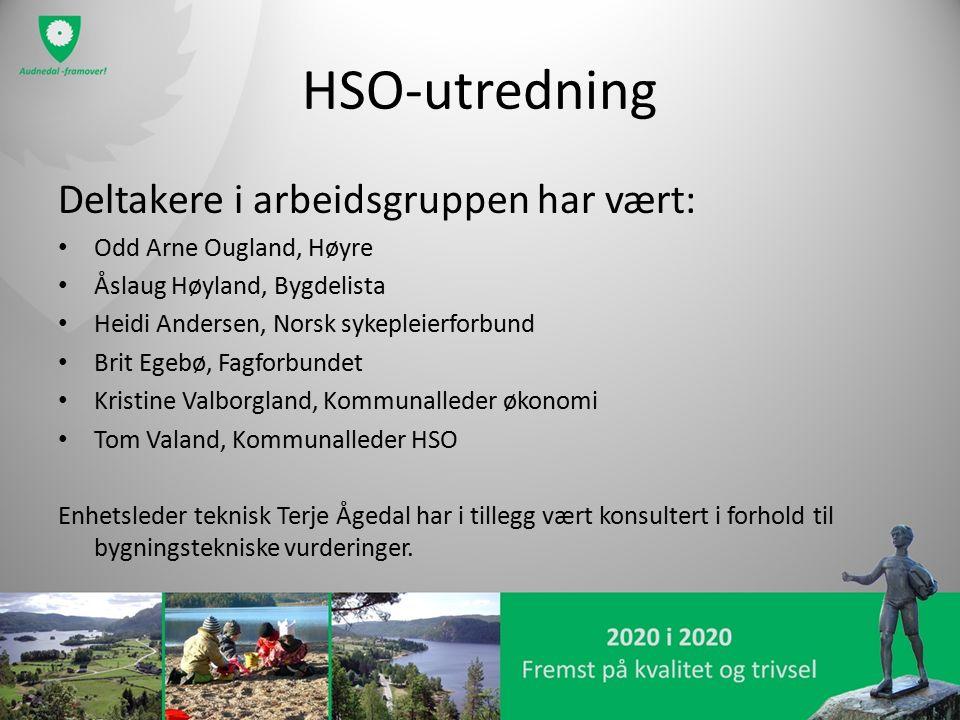 HSO-utredning Deltakere i arbeidsgruppen har vært: Odd Arne Ougland, Høyre Åslaug Høyland, Bygdelista Heidi Andersen, Norsk sykepleierforbund Brit Ege