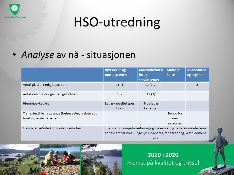 HSO-utredning Analyse av nå - situasjonen Byremo bo og omsorgssenter Konsmoheimen bo og servicesenter Audnedal helse Audnedal bo og dagsenter Antall plasser (ledig kapasitet)11 (1)13 (1-2)5 Antall omsorgsboliger (ledige boliger)6 (2)12 (3) Hjemmesykepleie Ledig kapasitet spes.
