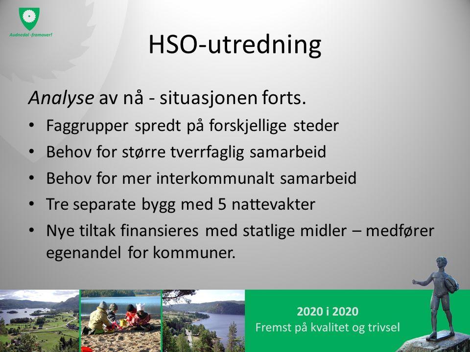 HSO-utredning Analyse av nå - situasjonen forts. Faggrupper spredt på forskjellige steder Behov for større tverrfaglig samarbeid Behov for mer interko