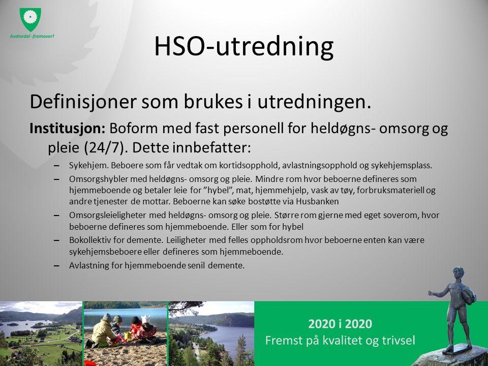 HSO-utredning Definisjoner som brukes i utredningen.