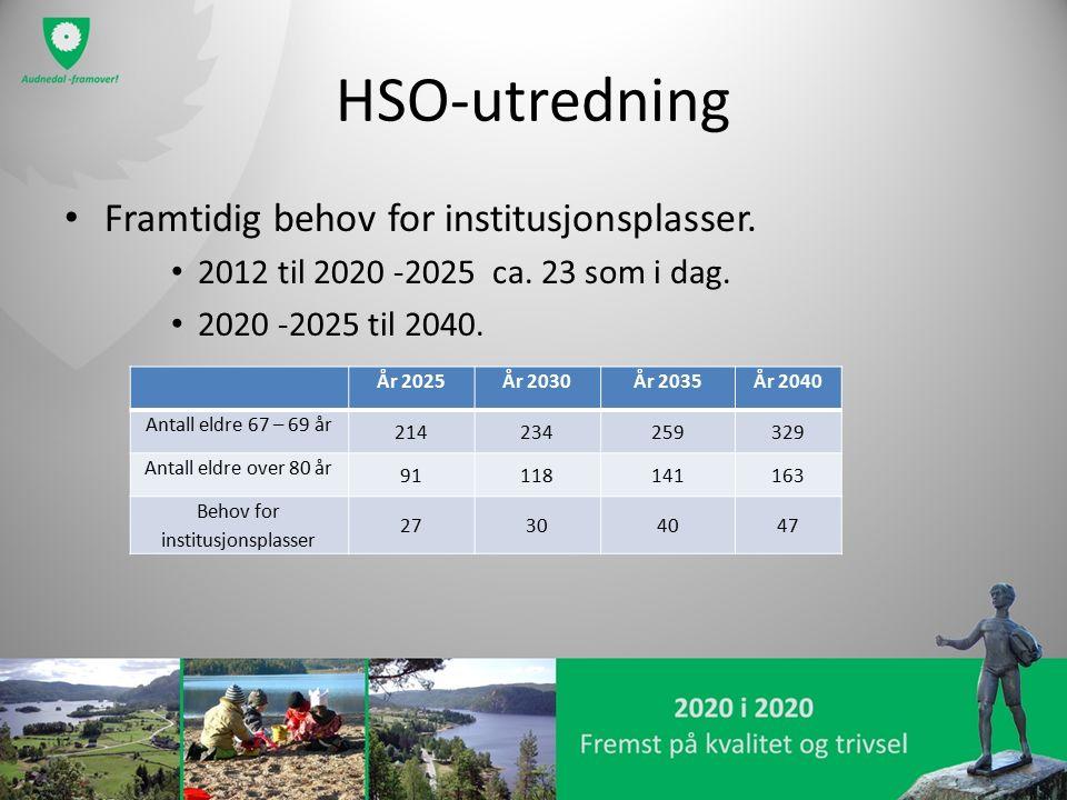 HSO-utredning Framtidig behov for institusjonsplasser. 2012 til 2020 -2025 ca. 23 som i dag. 2020 -2025 til 2040. År 2025År 2030År 2035År 2040 Antall