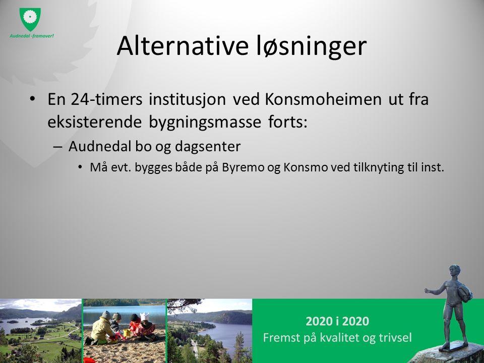 Alternative løsninger En 24-timers institusjon ved Konsmoheimen ut fra eksisterende bygningsmasse forts: – Audnedal bo og dagsenter Må evt. bygges båd