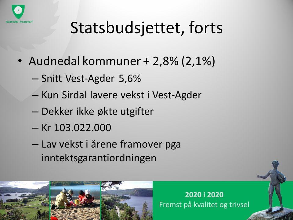 Statsbudsjettet, forts Audnedal kommuner + 2,8% (2,1%) – Snitt Vest-Agder 5,6% – Kun Sirdal lavere vekst i Vest-Agder – Dekker ikke økte utgifter – Kr 103.022.000 – Lav vekst i årene framover pga inntektsgarantiordningen
