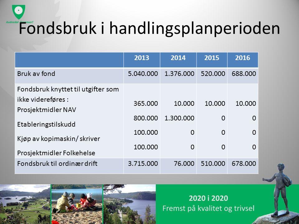 Fondsbruk i handlingsplanperioden 2013201420152016 Bruk av fond5.040.0001.376.000520.000688.000 Fondsbruk knyttet til utgifter som ikke videreføres :