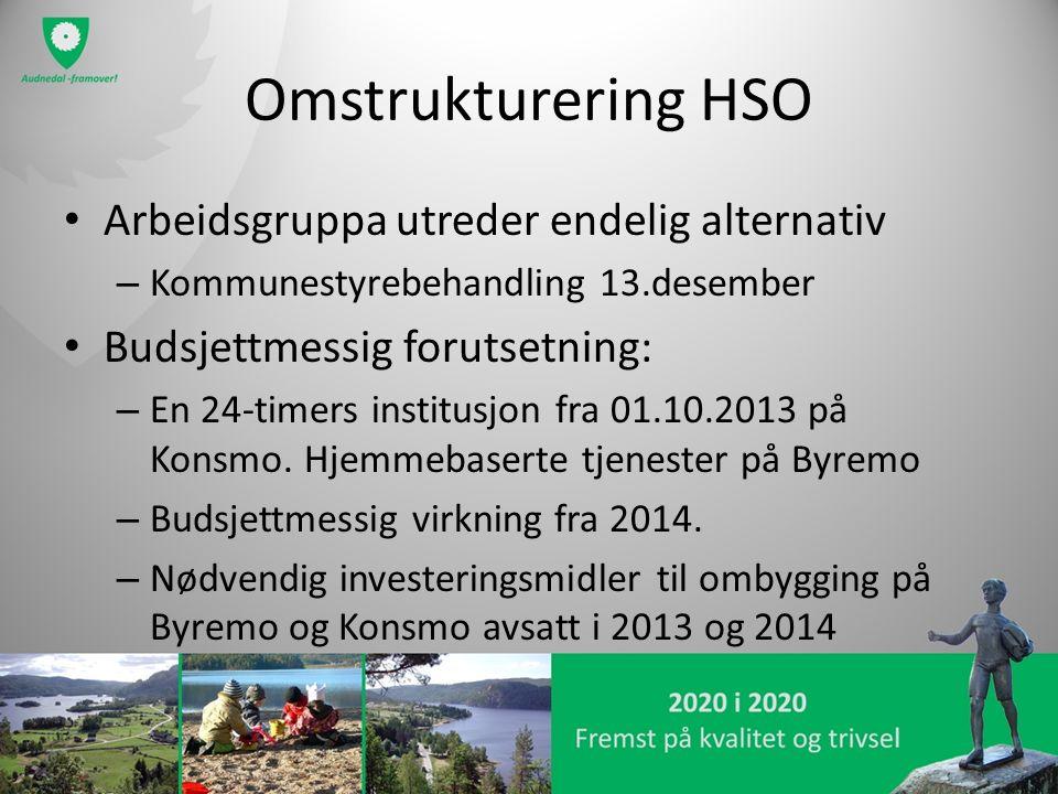 Omstrukturering HSO Arbeidsgruppa utreder endelig alternativ – Kommunestyrebehandling 13.desember Budsjettmessig forutsetning: – En 24-timers institus