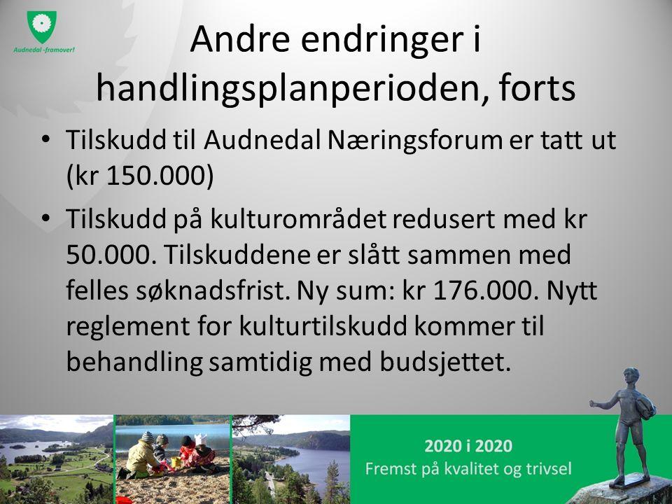 Andre endringer i handlingsplanperioden, forts Tilskudd til Audnedal Næringsforum er tatt ut (kr 150.000) Tilskudd på kulturområdet redusert med kr 50