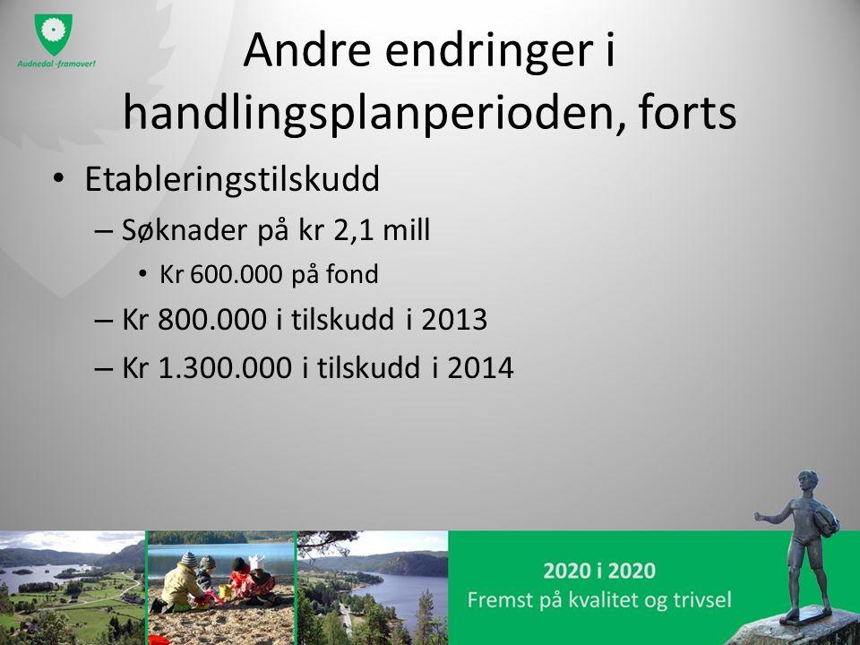 Andre endringer i handlingsplanperioden, forts Etableringstilskudd – Søknader på kr 2,1 mill Kr 600.000 på fond – Kr 800.000 i tilskudd i 2013 – Kr 1.300.000 i tilskudd i 2014