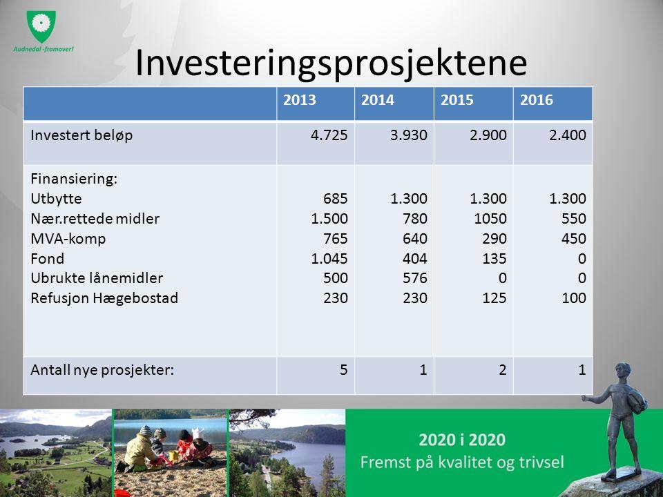 Investeringsprosjektene 2013201420152016 Investert beløp4.7253.9302.9002.400 Finansiering: Utbytte Nær.rettede midler MVA-komp Fond Ubrukte lånemidler