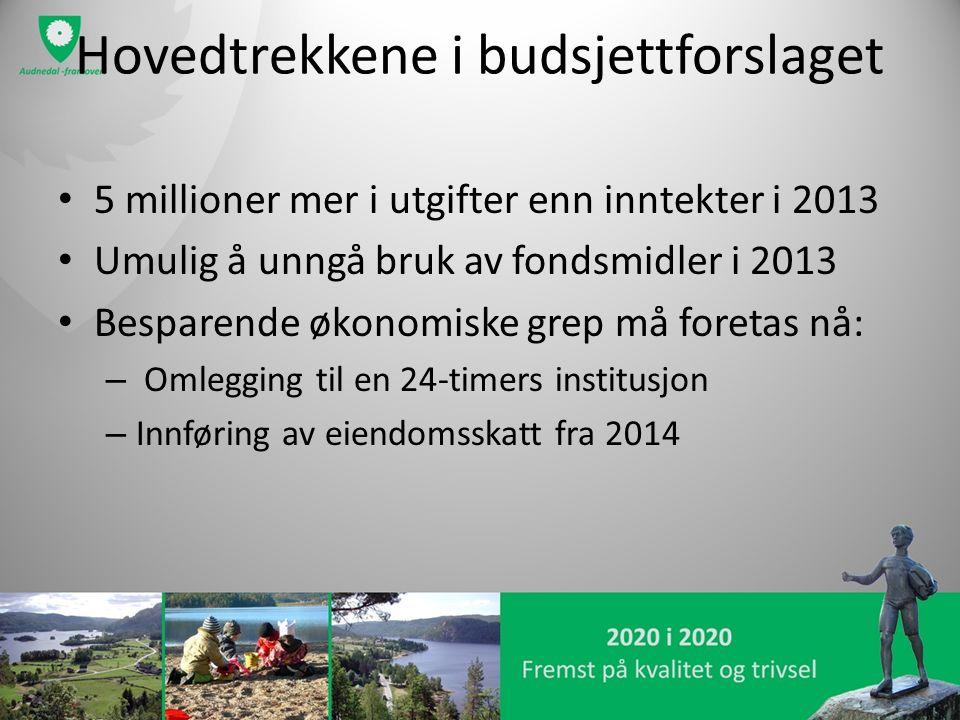 Hovedtrekkene i budsjettforslaget 5 millioner mer i utgifter enn inntekter i 2013 Umulig å unngå bruk av fondsmidler i 2013 Besparende økonomiske grep må foretas nå: – Omlegging til en 24-timers institusjon – Innføring av eiendomsskatt fra 2014