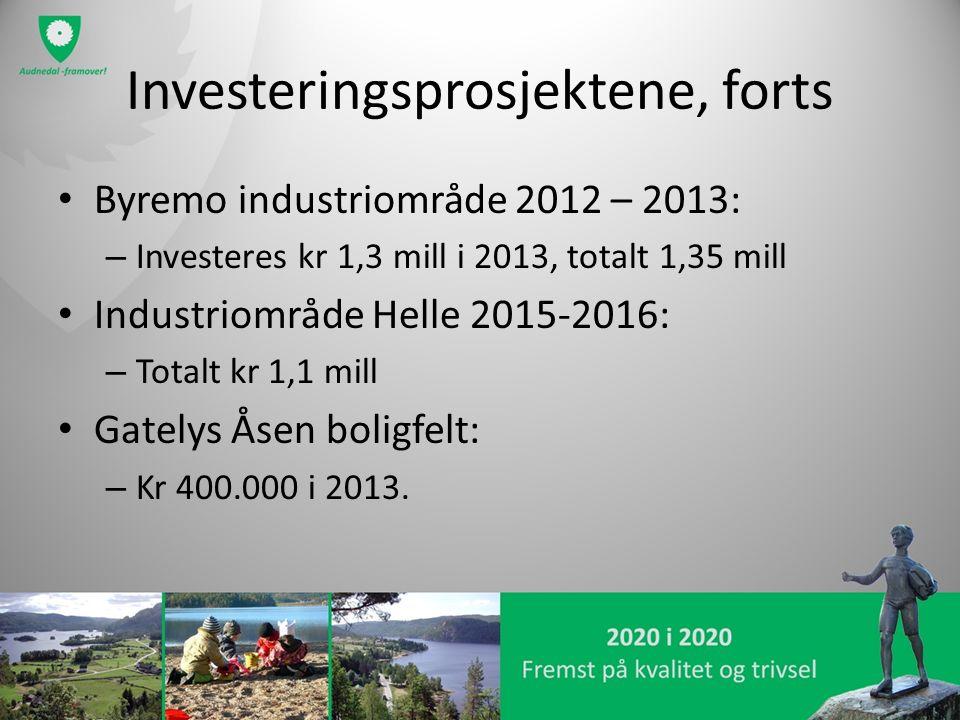 Investeringsprosjektene, forts Byremo industriområde 2012 – 2013: – Investeres kr 1,3 mill i 2013, totalt 1,35 mill Industriområde Helle 2015-2016: – Totalt kr 1,1 mill Gatelys Åsen boligfelt: – Kr 400.000 i 2013.