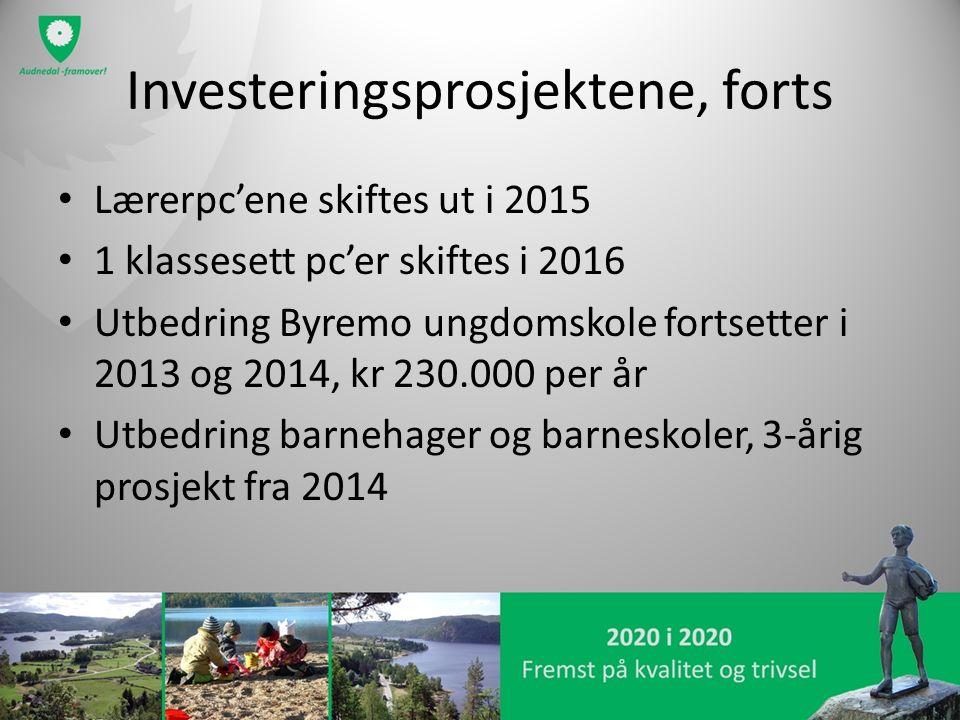Investeringsprosjektene, forts Lærerpc'ene skiftes ut i 2015 1 klassesett pc'er skiftes i 2016 Utbedring Byremo ungdomskole fortsetter i 2013 og 2014, kr 230.000 per år Utbedring barnehager og barneskoler, 3-årig prosjekt fra 2014