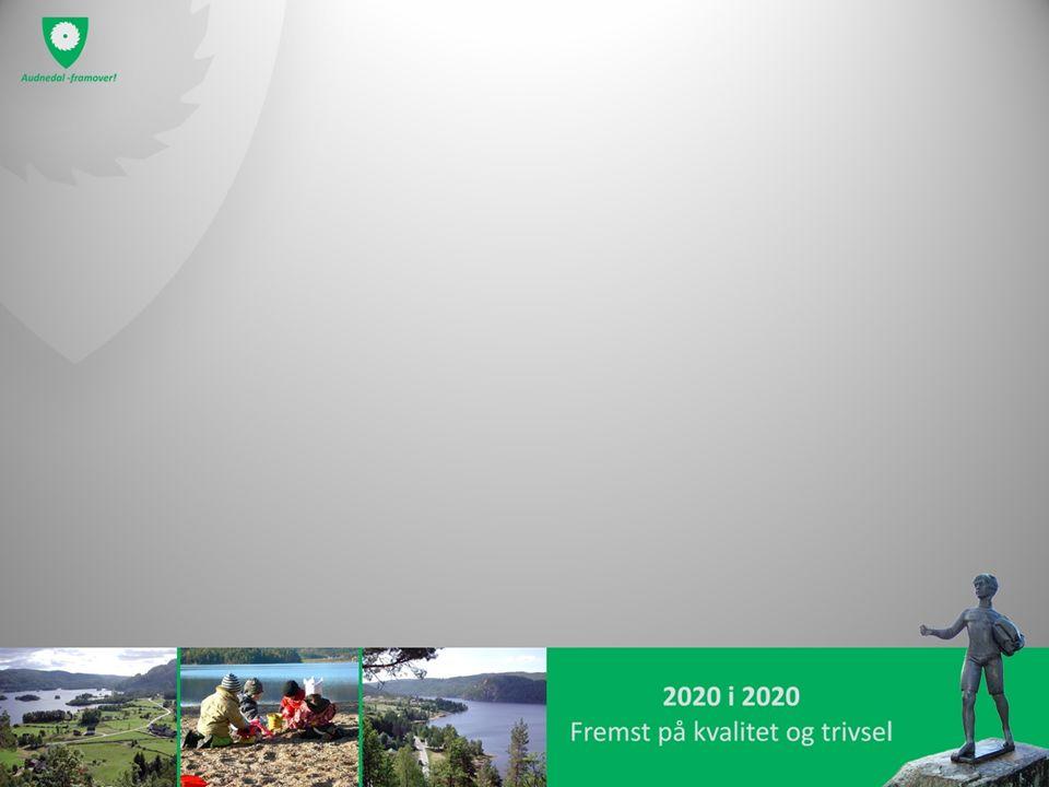 Investeringsprosjektene Ombygging Byremo – Senter for hjemmebaserte tjenester – 2013: kr 500.000 (eksl mva) – 2014:kr 1.500.000 (eksl mva) Ombygging Konsmo – 24-timers institusjon: – 2013:kr 1.000.000 (eksl mva)