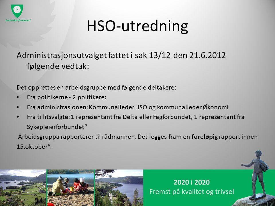 HSO-utredning Administrasjonsutvalget fattet i sak 13/12 den 21.6.2012 følgende vedtak: Det opprettes en arbeidsgruppe med følgende deltakere: Fra pol