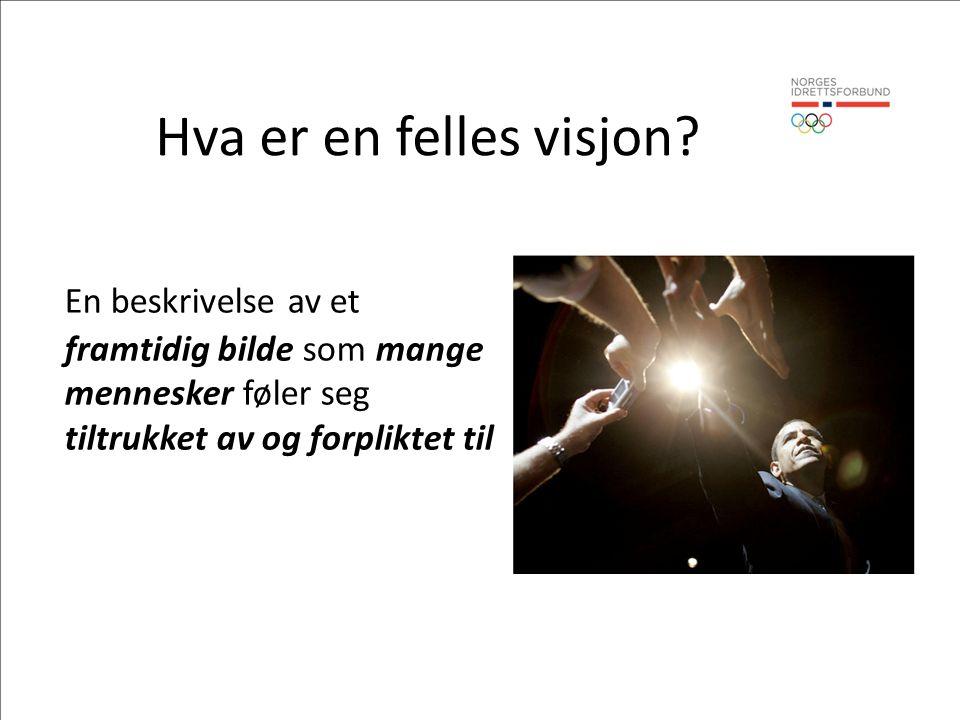 Hva er en felles visjon.