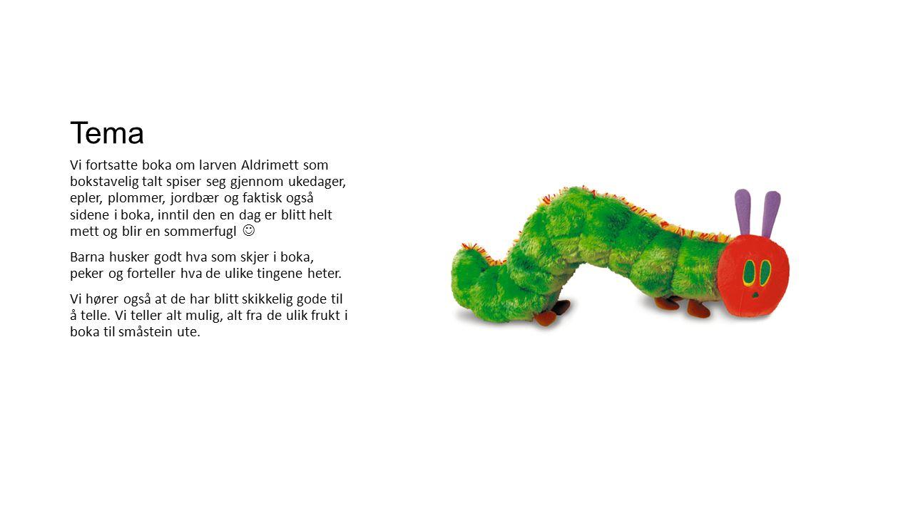 Tema Vi fortsatte boka om larven Aldrimett som bokstavelig talt spiser seg gjennom ukedager, epler, plommer, jordbær og faktisk også sidene i boka, inntil den en dag er blitt helt mett og blir en sommerfugl Barna husker godt hva som skjer i boka, peker og forteller hva de ulike tingene heter.