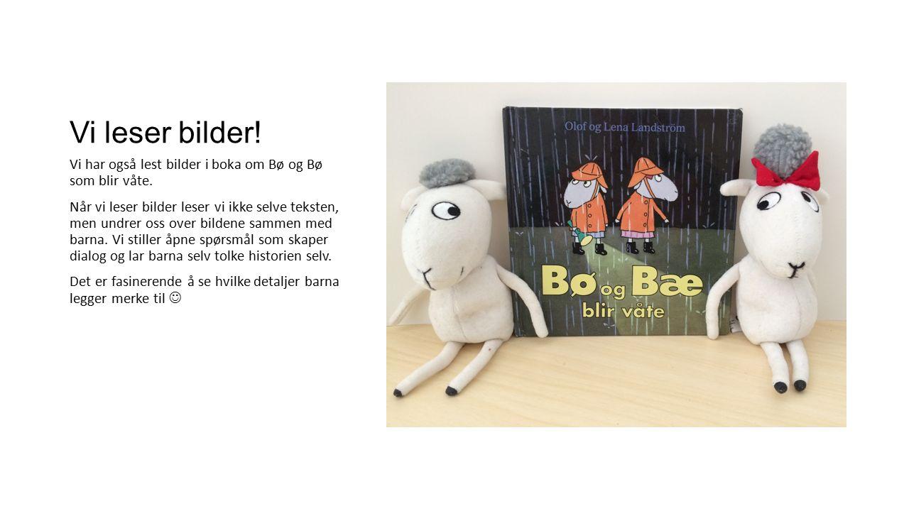 Vi leser bilder. Vi har også lest bilder i boka om Bø og Bø som blir våte.