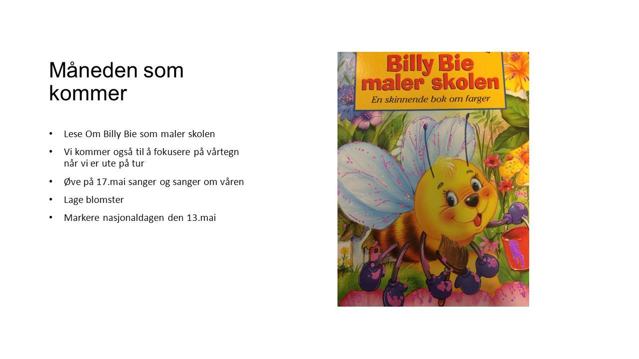 Måneden som kommer Lese Om Billy Bie som maler skolen Vi kommer også til å fokusere på vårtegn når vi er ute på tur Øve på 17.mai sanger og sanger om våren Lage blomster Markere nasjonaldagen den 13.mai