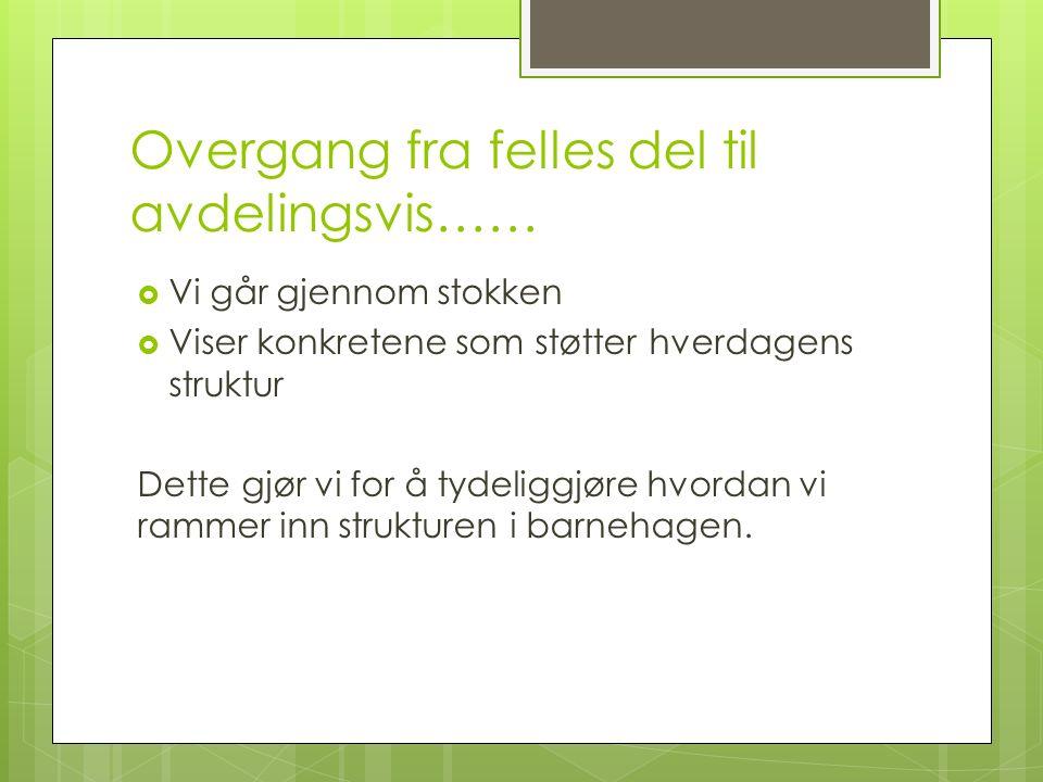 Presentasjon av de voksne på Fjelltrolla Kaia Anita Gunvor Frode Endre Line Nina, Celine og Kristine er vikarer ved sykdom