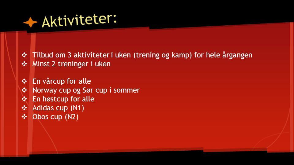 Aktiviteter: ❖ Tilbud om 3 aktiviteter i uken (trening og kamp) for hele årgangen ❖ Minst 2 treninger i uken ❖ En vårcup for alle ❖ Norway cup og Sør cup i sommer ❖ En høstcup for alle ❖ Adidas cup (N1) ❖ Obos cup (N2)
