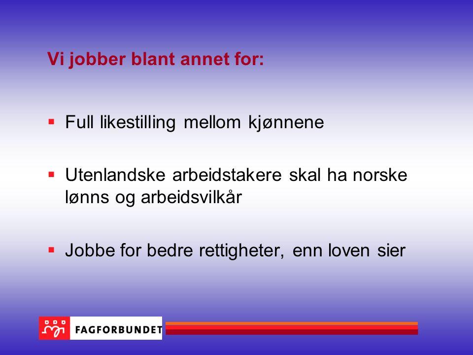 Vi jobber blant annet for:  Full likestilling mellom kjønnene  Utenlandske arbeidstakere skal ha norske lønns og arbeidsvilkår  Jobbe for bedre ret