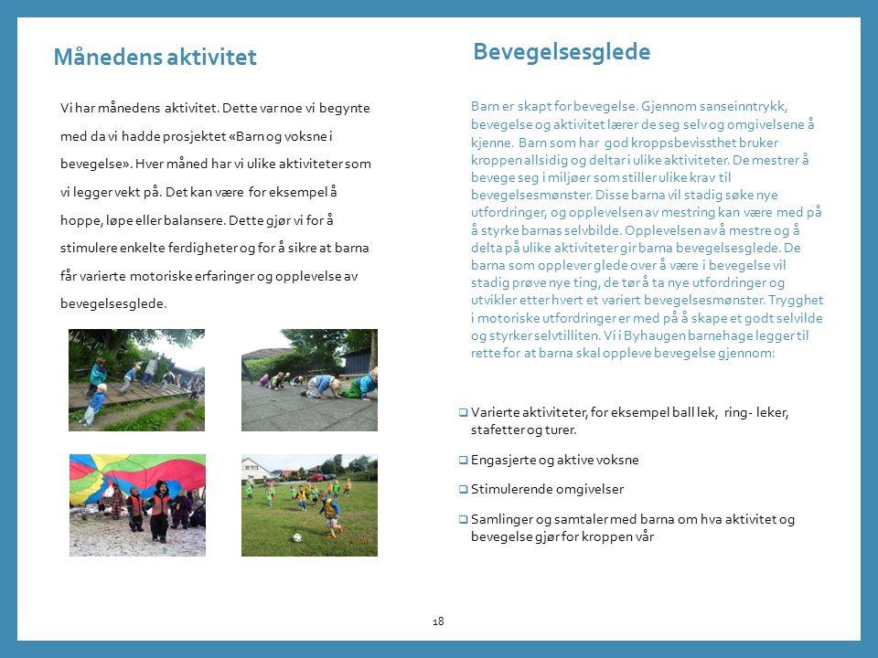 Månedens aktivitet Vi har månedens aktivitet. Dette var noe vi begynte med da vi hadde prosjektet «Barn og voksne i bevegelse». Hver måned har vi ulik
