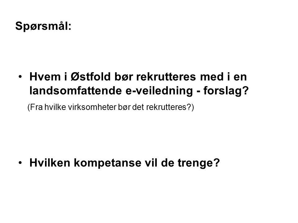 Spørsmål: Hvem i Østfold bør rekrutteres med i en landsomfattende e-veiledning - forslag.