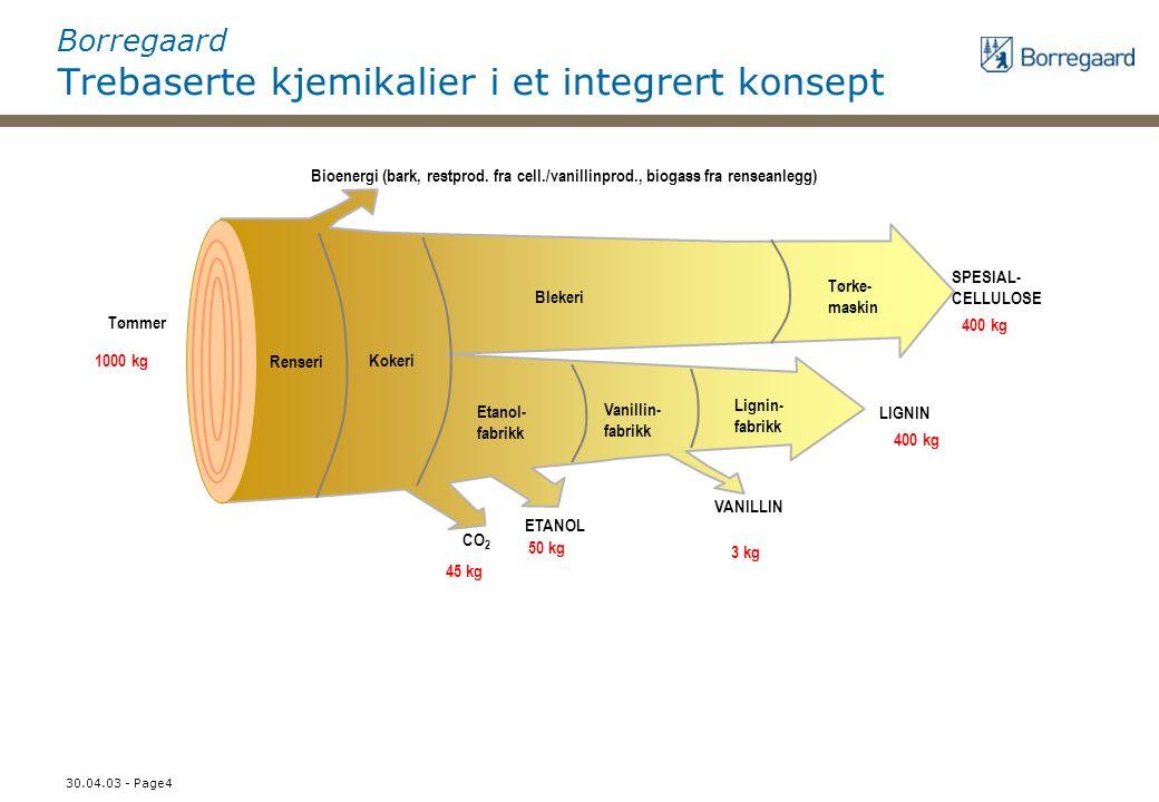 30.04.03 - Page4 Borregaard Trebaserte kjemikalier i et integrert konsept VANILLIN LIGNIN SPESIAL- CELLULOSE ETANOL CO 2 Bioenergi (bark, restprod.