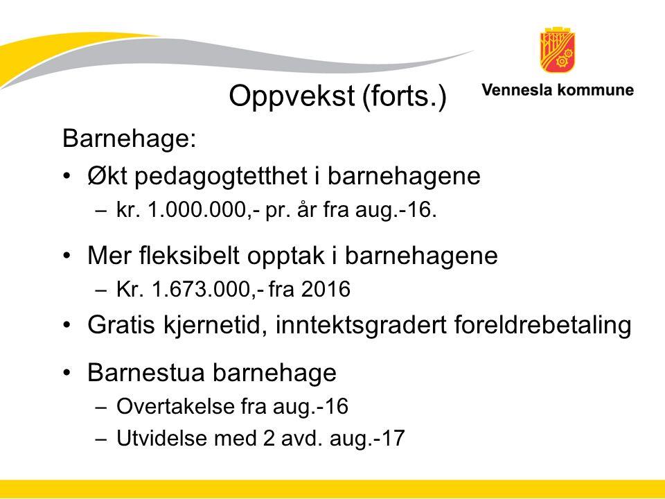Oppvekst (forts.) Barnehage: Økt pedagogtetthet i barnehagene –kr.
