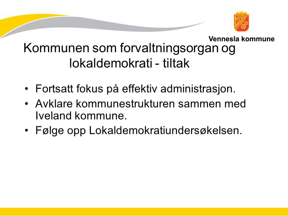 Kommunen som forvaltningsorgan og lokaldemokrati - tiltak Fortsatt fokus på effektiv administrasjon.
