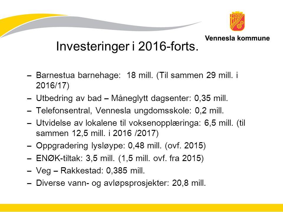 Investeringer i 2016-forts. –Barnestua barnehage: 18 mill.