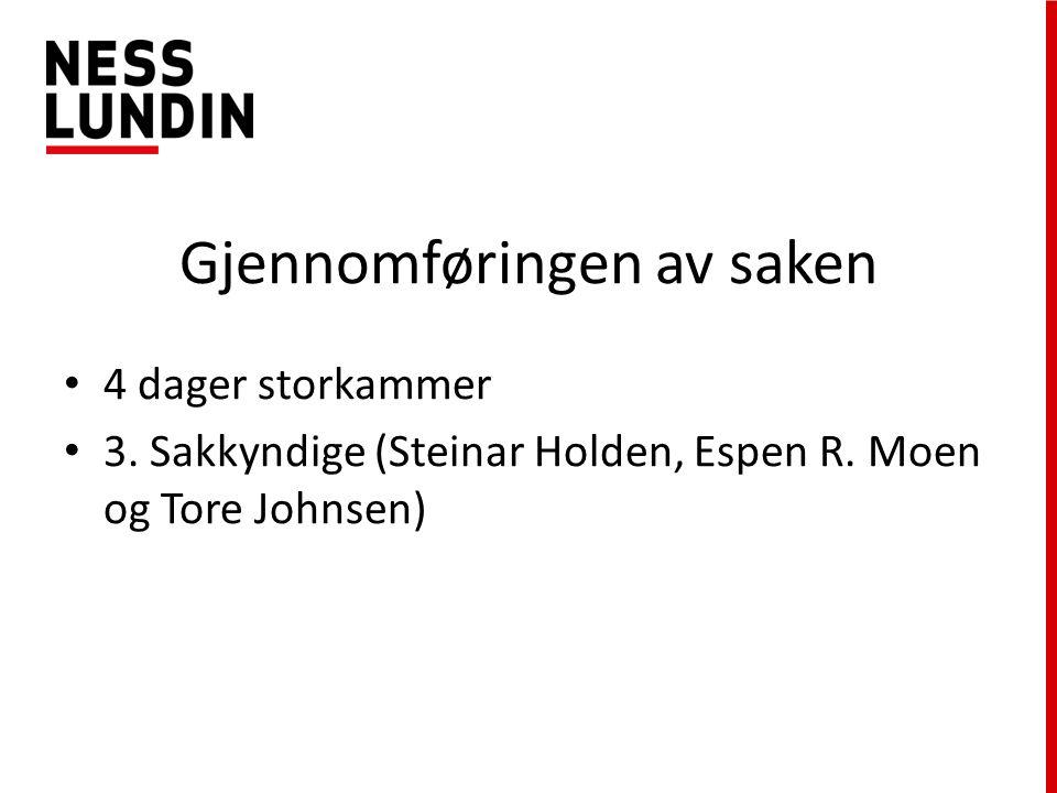 Gjennomføringen av saken 4 dager storkammer 3. Sakkyndige (Steinar Holden, Espen R.