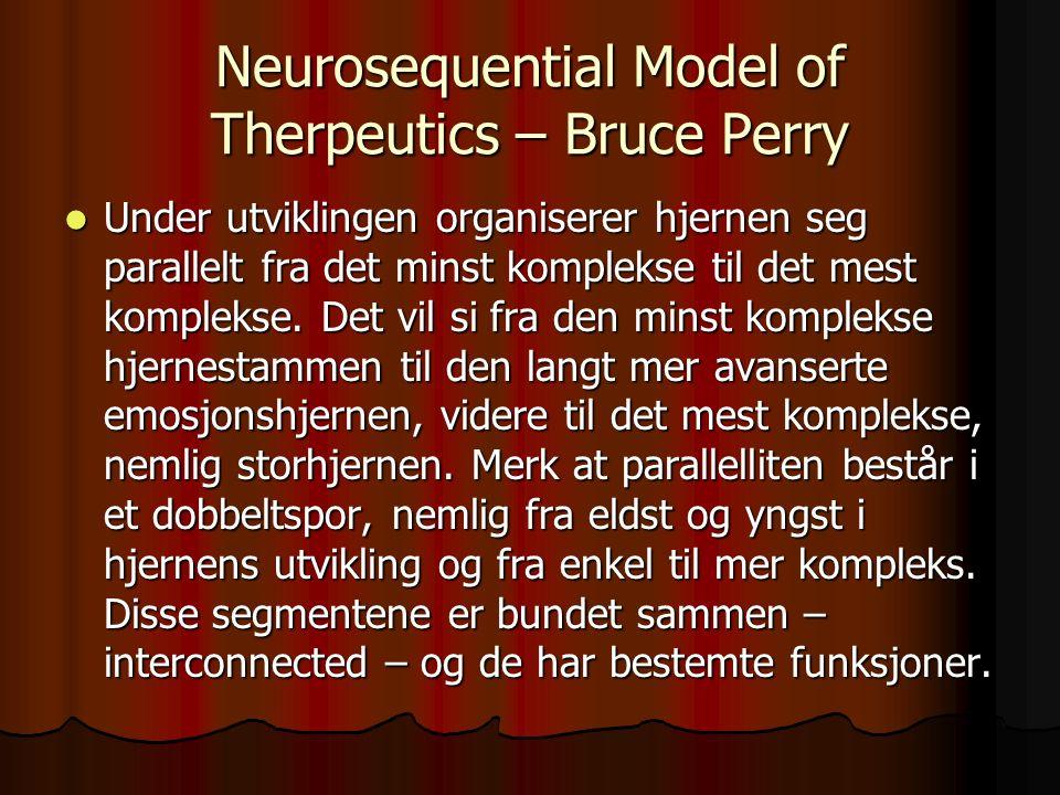 Neurosequential Model of Therpeutics – Bruce Perry Under utviklingen organiserer hjernen seg parallelt fra det minst komplekse til det mest komplekse.