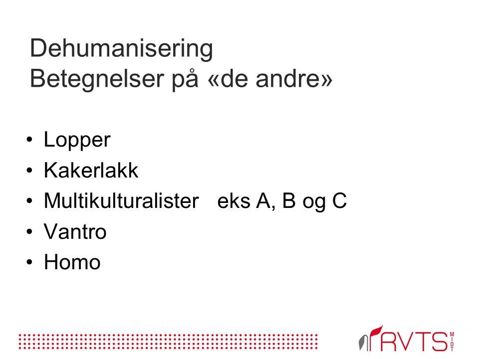 Dehumanisering Betegnelser på «de andre» Lopper Kakerlakk Multikulturalistereks A, B og C Vantro Homo