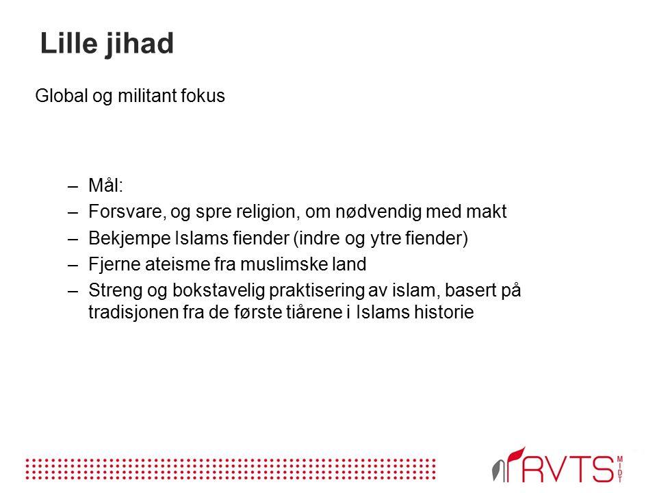 Lille jihad Global og militant fokus –Mål: –Forsvare, og spre religion, om nødvendig med makt –Bekjempe Islams fiender (indre og ytre fiender) –Fjerne ateisme fra muslimske land –Streng og bokstavelig praktisering av islam, basert på tradisjonen fra de første tiårene i Islams historie