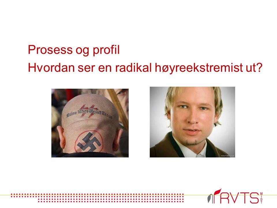 Prosess og profil Hvordan ser en radikal høyreekstremist ut